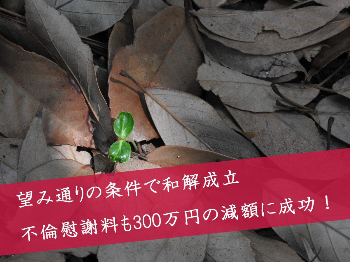 解決事例:望み通りの条件を獲得 不倫慰謝料を300万円減額して解決